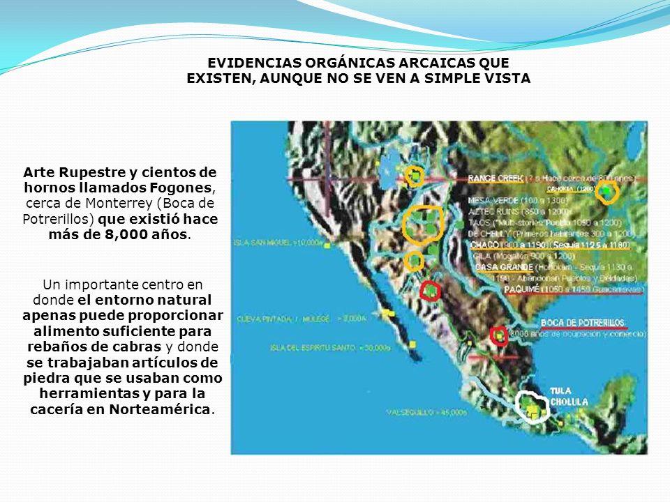 EVIDENCIAS ORGÁNICAS ARCAICAS QUE EXISTEN, AUNQUE NO SE VEN A SIMPLE VISTA