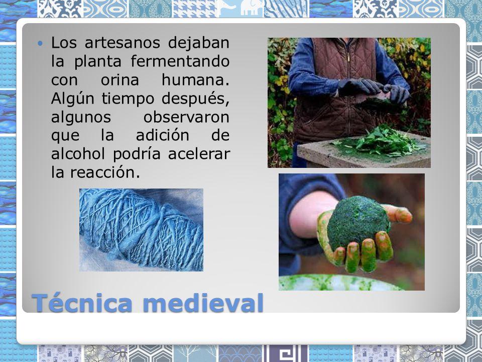 Los artesanos dejaban la planta fermentando con orina humana