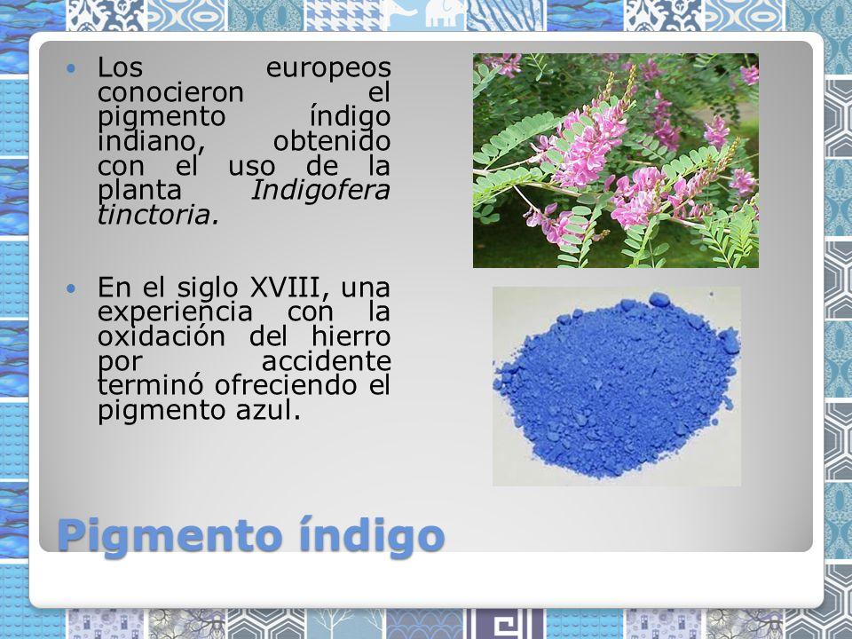 Los europeos conocieron el pigmento índigo indiano, obtenido con el uso de la planta Indigofera tinctoria.