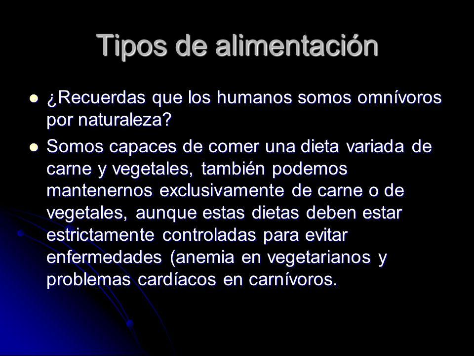 Tipos de alimentación ¿Recuerdas que los humanos somos omnívoros por naturaleza