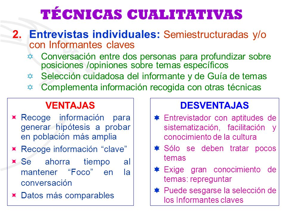 TÉCNICAS CUALITATIVAS