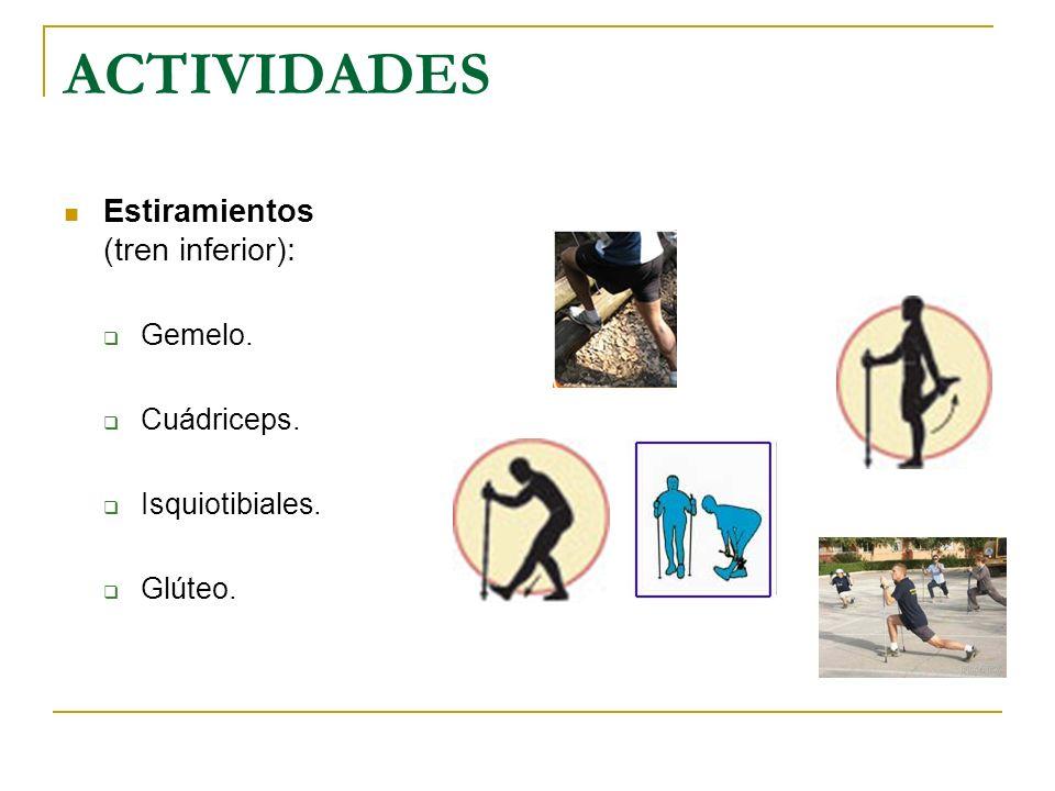 ACTIVIDADES Estiramientos (tren inferior): Gemelo. Cuádriceps.