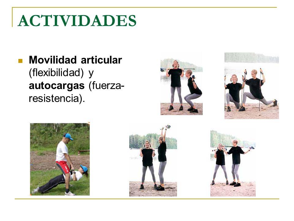 ACTIVIDADES Movilidad articular (flexibilidad) y autocargas (fuerza-resistencia).