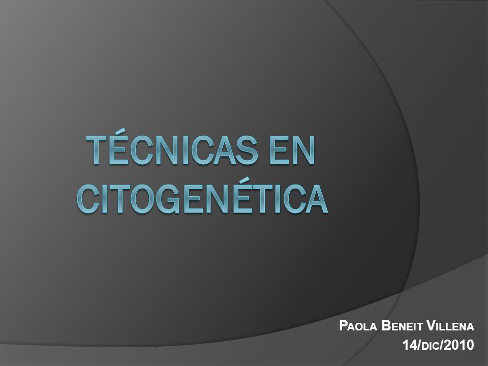 Técnicas en citogenética