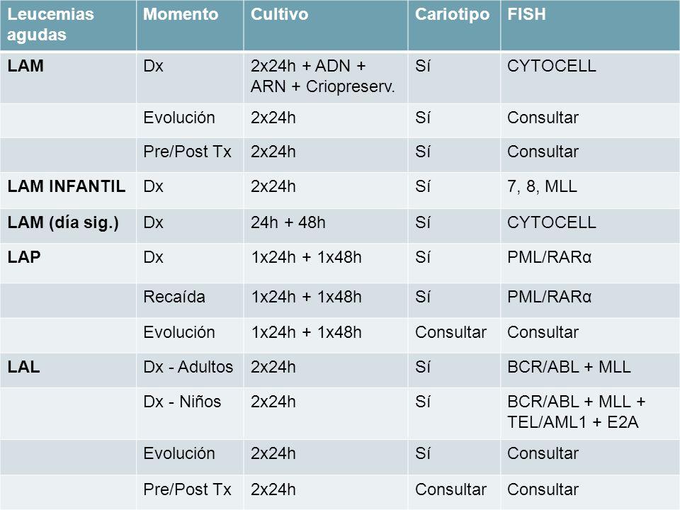2x24h + ADN + ARN + Criopreserv. Sí CYTOCELL