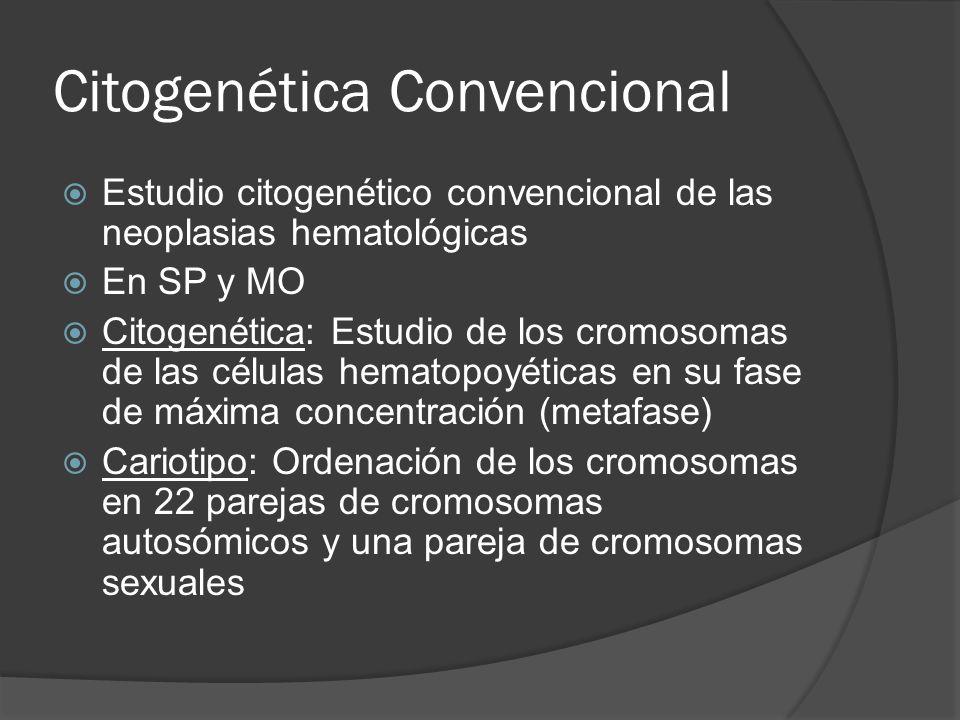 Citogenética Convencional