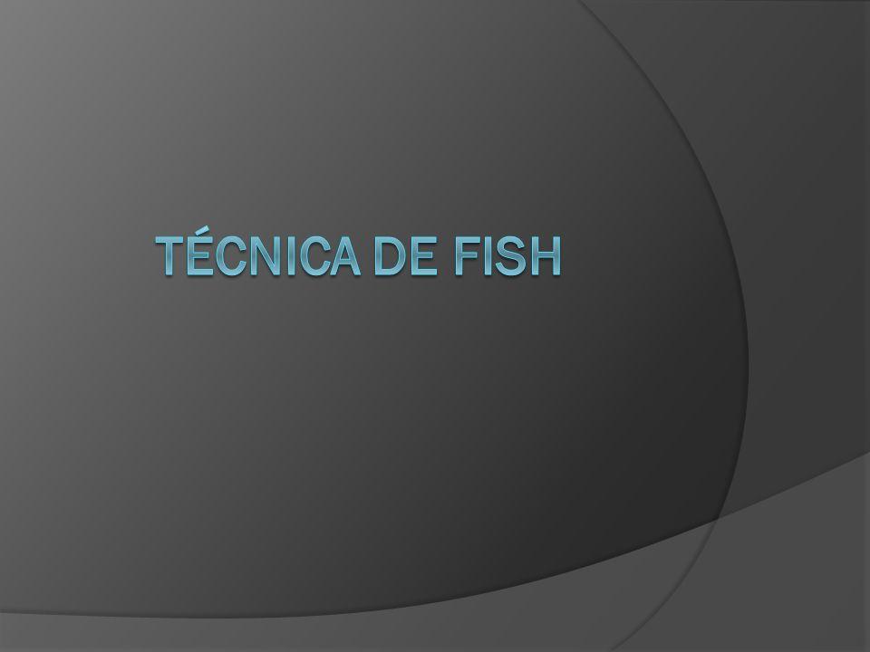 Técnica de fish