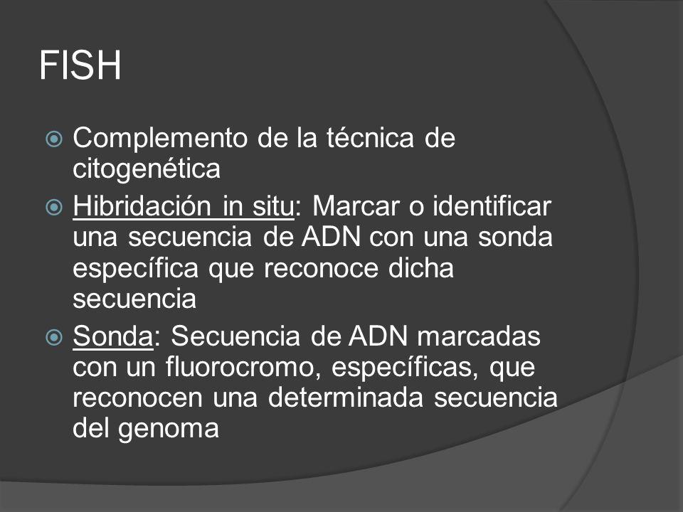 FISH Complemento de la técnica de citogenética