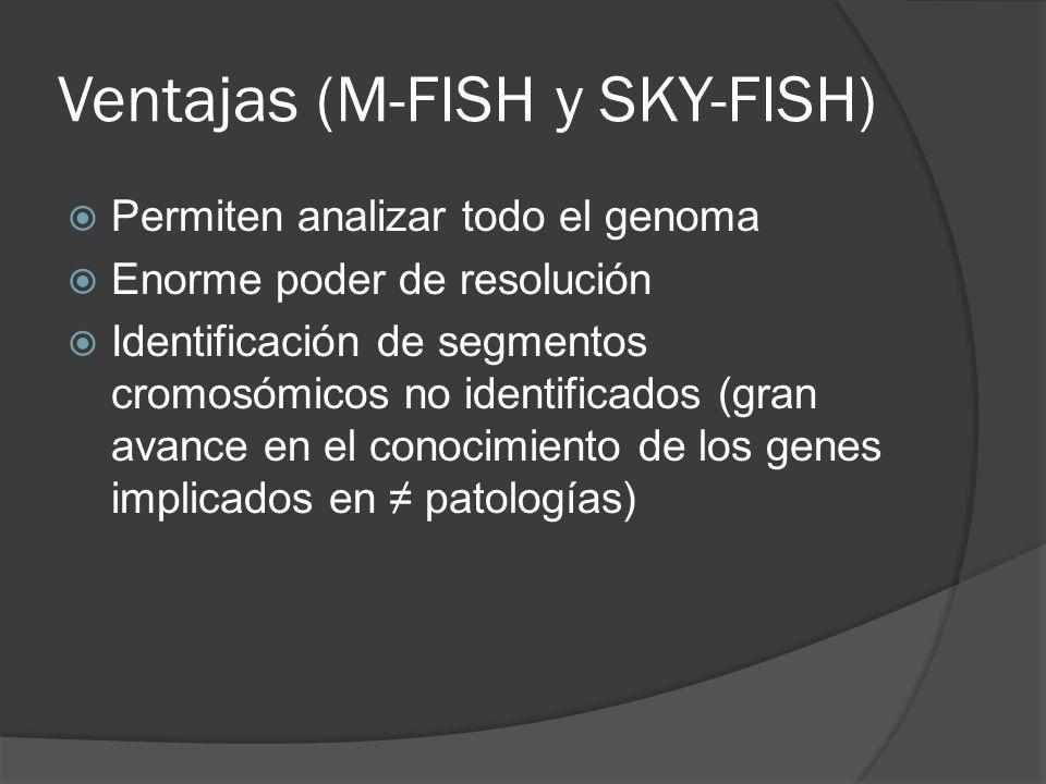 Ventajas (M-FISH y SKY-FISH)