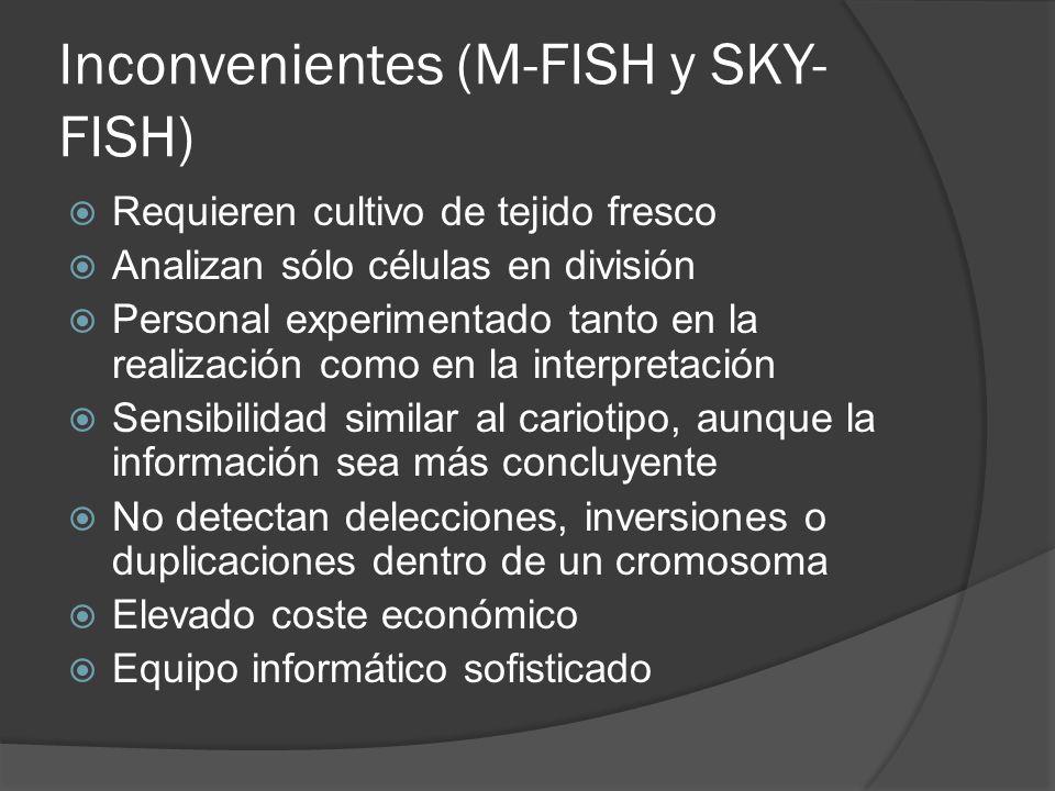 Inconvenientes (M-FISH y SKY-FISH)