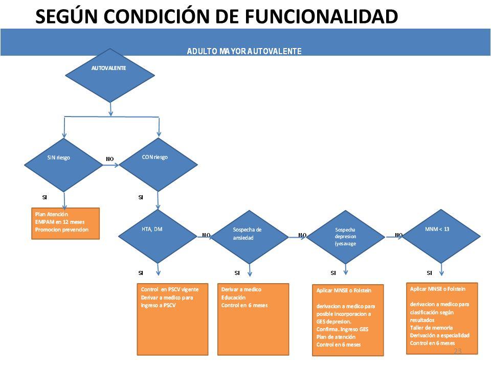 SEGÚN CONDICIÓN DE FUNCIONALIDAD