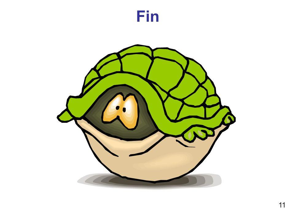 Fin 11