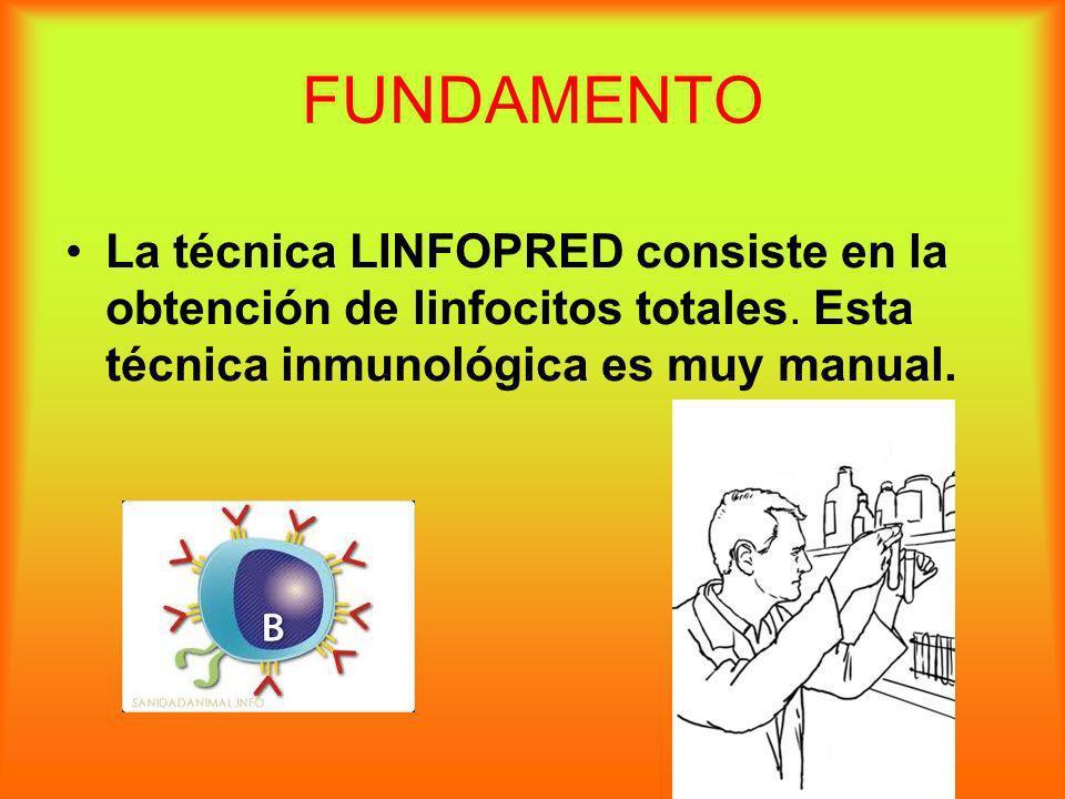 FUNDAMENTO La técnica LINFOPRED consiste en la obtención de linfocitos totales.