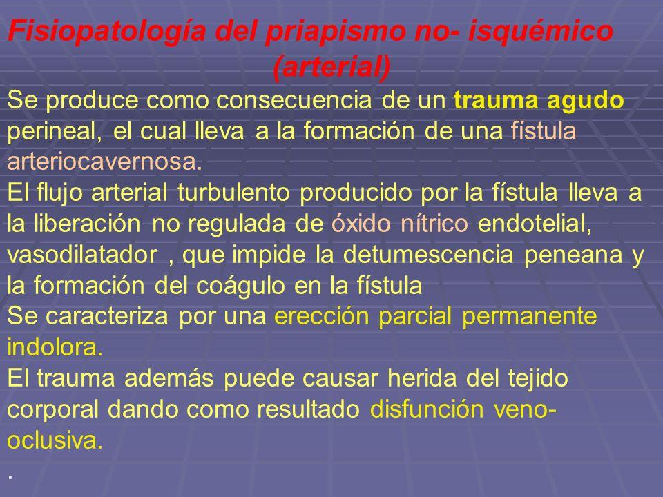 Fisiopatología del priapismo no- isquémico (arterial)