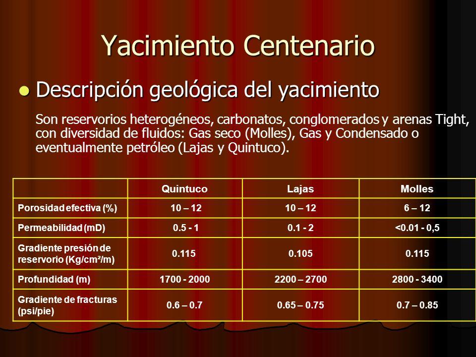 Yacimiento Centenario