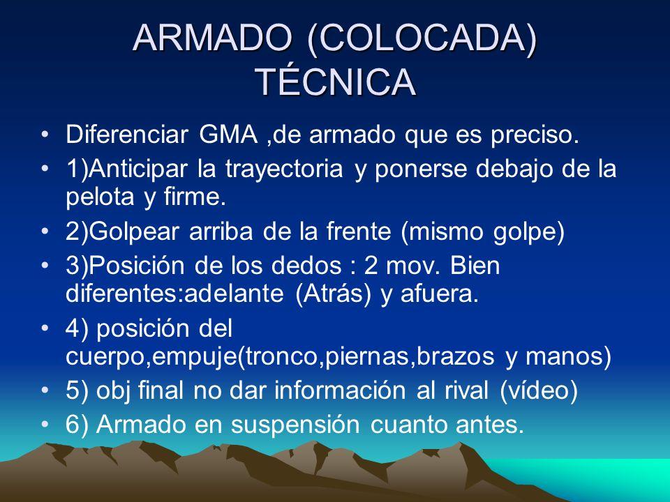 ARMADO (COLOCADA) TÉCNICA