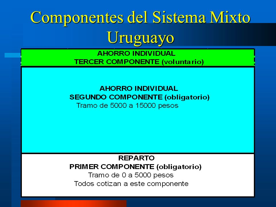 Componentes del Sistema Mixto Uruguayo