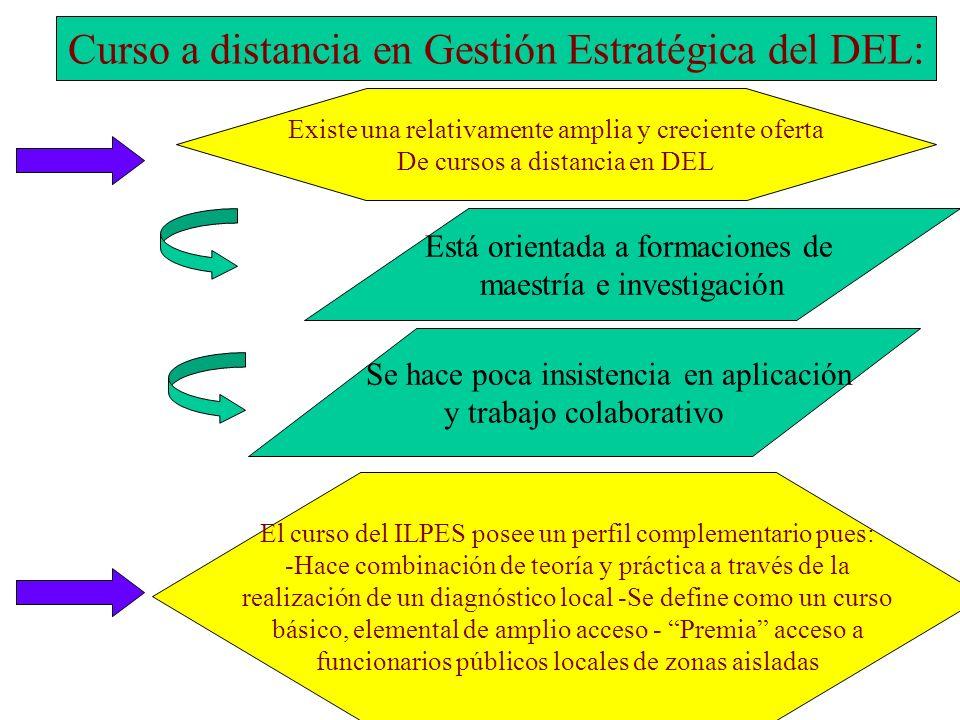 Curso a distancia en Gestión Estratégica del DEL: