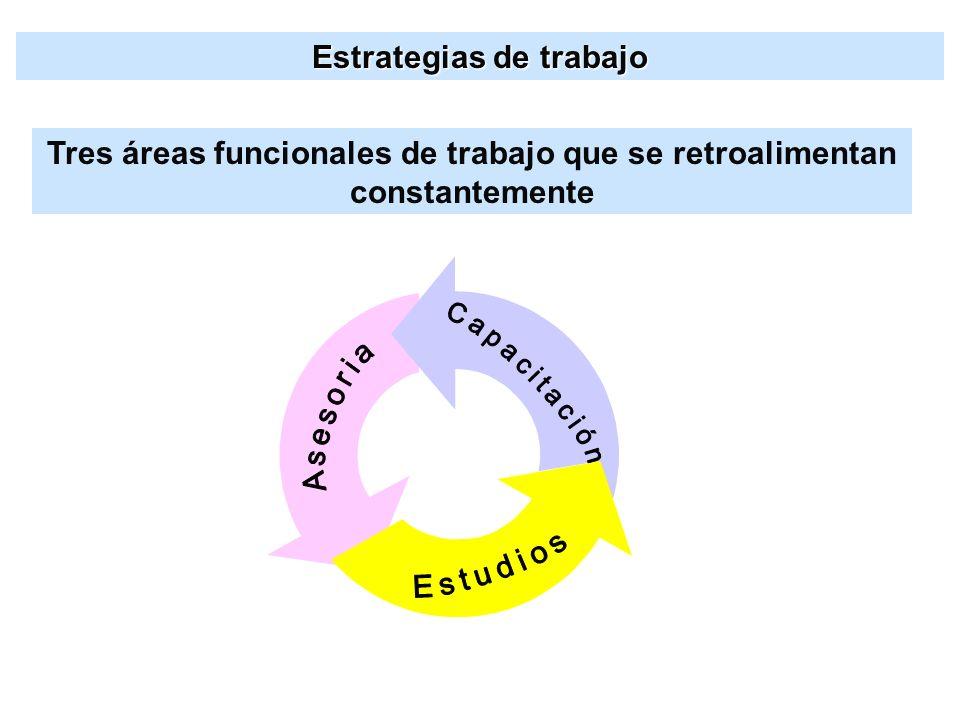 Estudios Capacitación Estrategias de trabajo