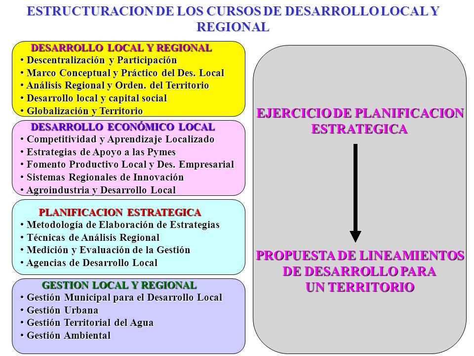ESTRUCTURACION DE LOS CURSOS DE DESARROLLO LOCAL Y REGIONAL