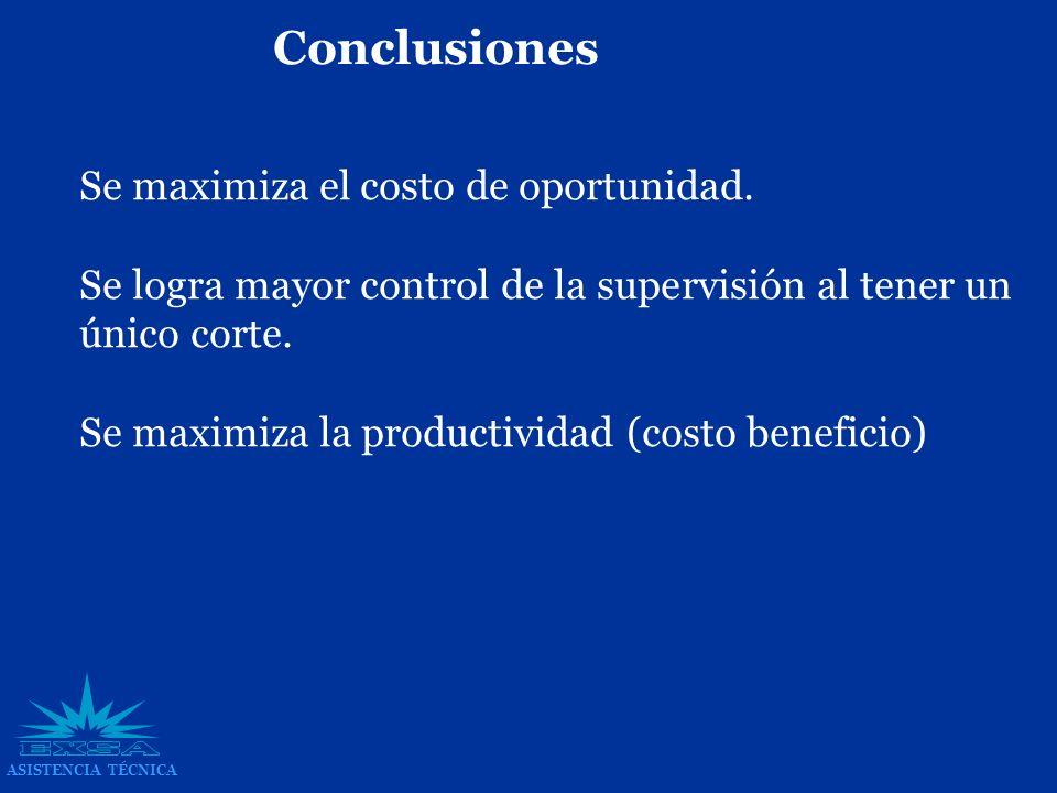 Conclusiones Se maximiza el costo de oportunidad.