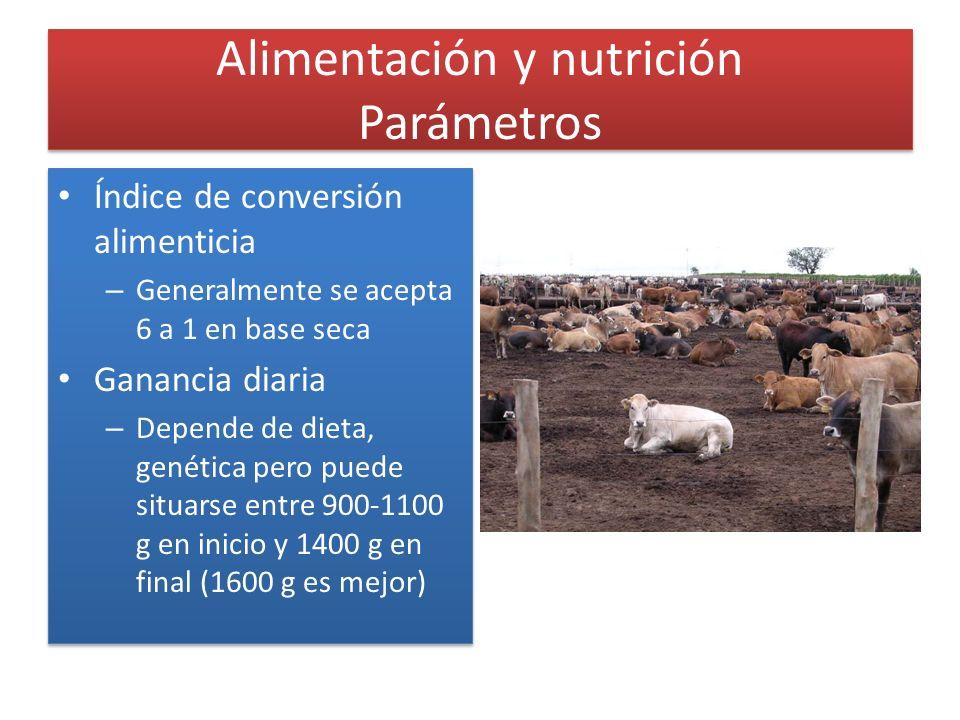 Alimentación y nutrición Parámetros