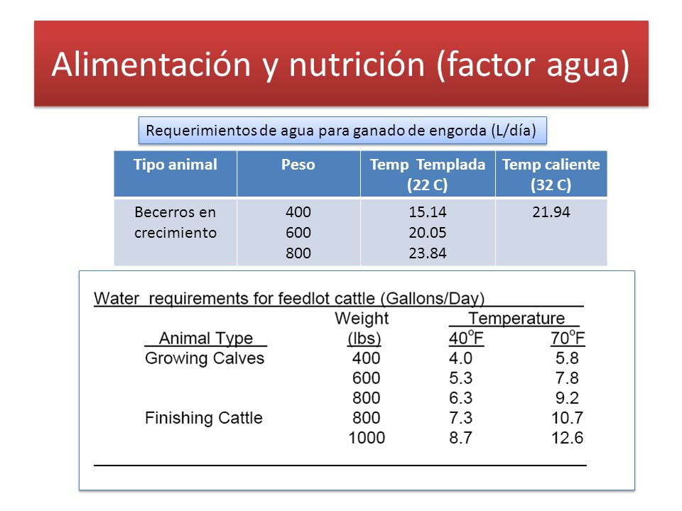 Alimentación y nutrición (factor agua)