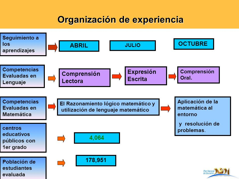 Organización de experiencia