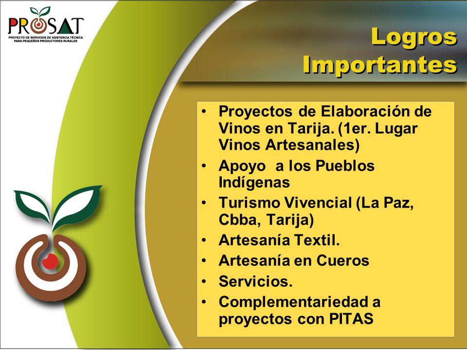 Logros Importantes Proyectos de Elaboración de Vinos en Tarija. (1er. Lugar Vinos Artesanales) Apoyo a los Pueblos Indígenas.