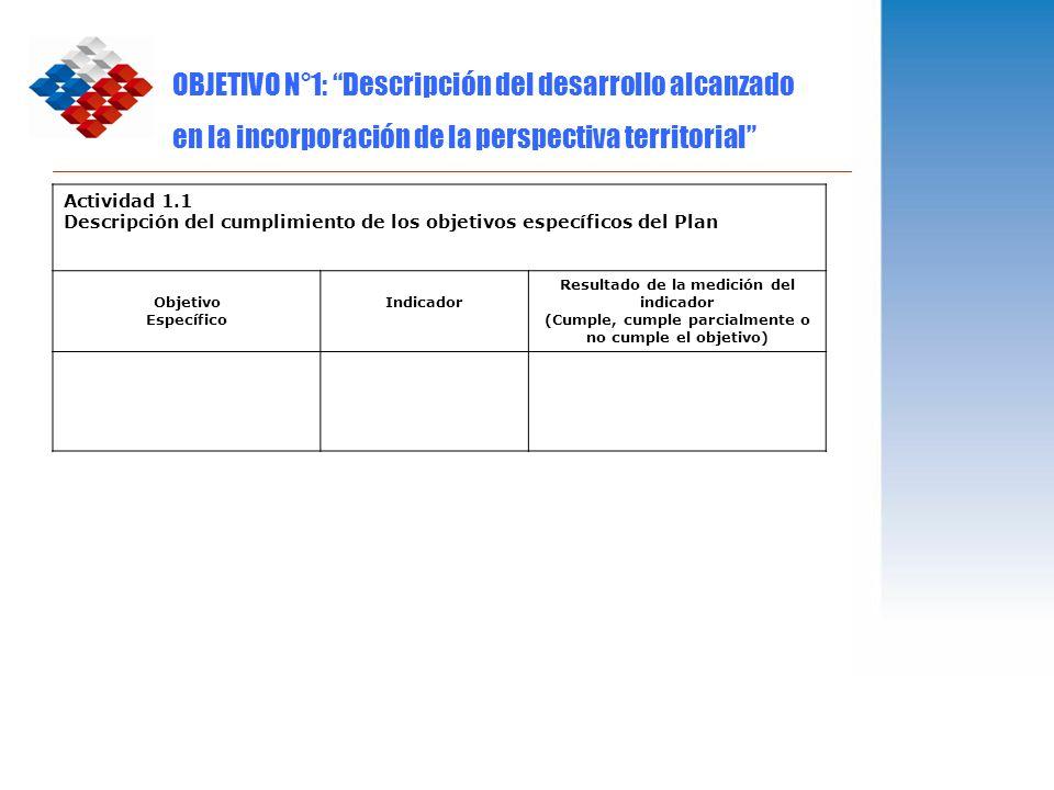 OBJETIVO N°1: Descripción del desarrollo alcanzado en la incorporación de la perspectiva territorial