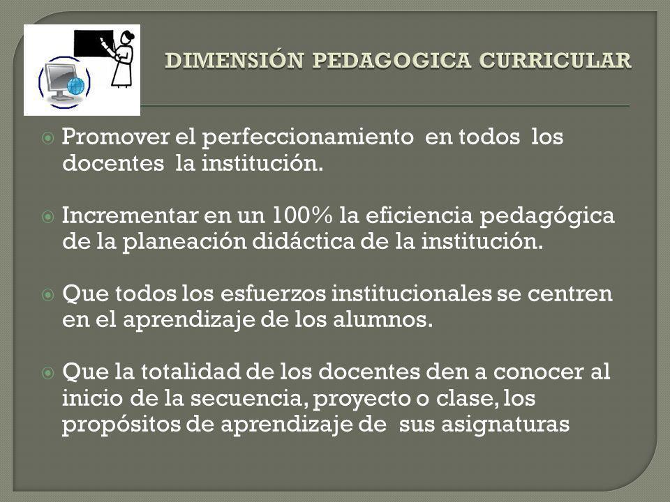 DIMENSIÓN PEDAGOGICA CURRICULAR
