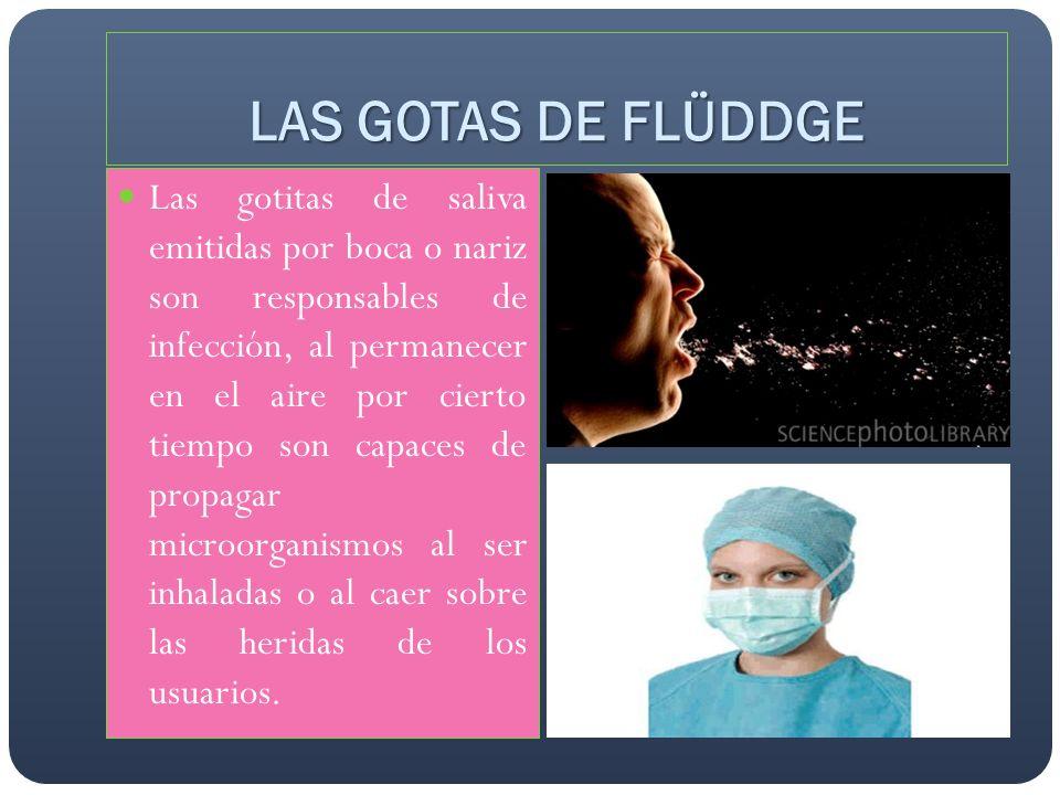 LAS GOTAS DE FLÜDDGE