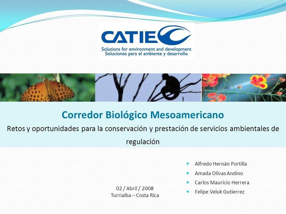 Corredor Biológico Mesoamericano Retos y oportunidades para la conservación y prestación de servicios ambientales de regulación