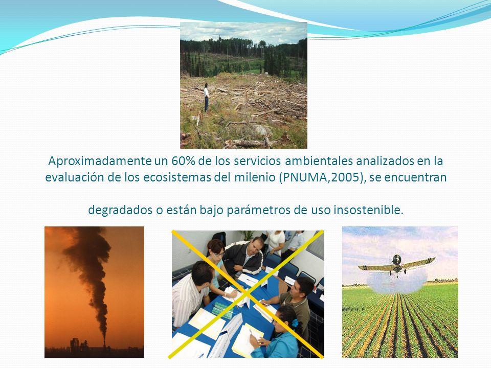 Aproximadamente un 60% de los servicios ambientales analizados en la evaluación de los ecosistemas del milenio (PNUMA,2005), se encuentran degradados o están bajo parámetros de uso insostenible.