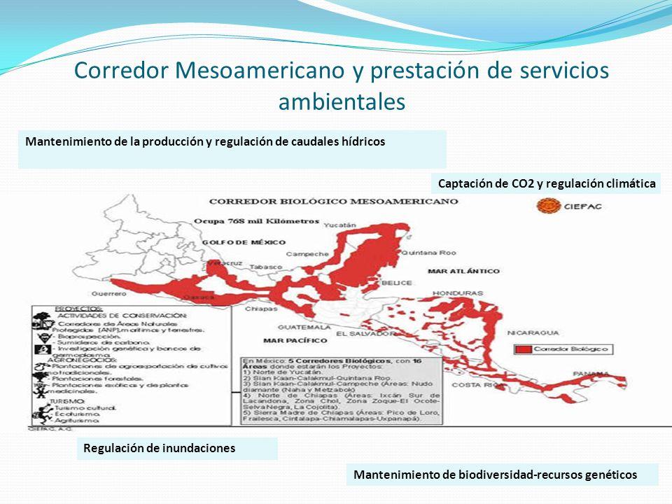 Corredor Mesoamericano y prestación de servicios ambientales