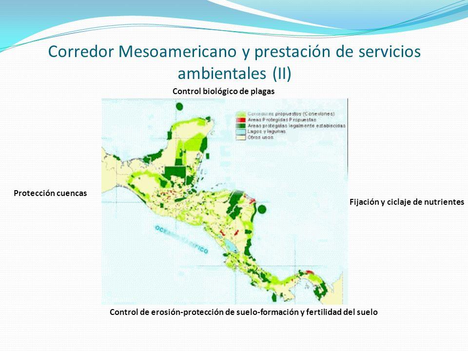 Corredor Mesoamericano y prestación de servicios ambientales (II)