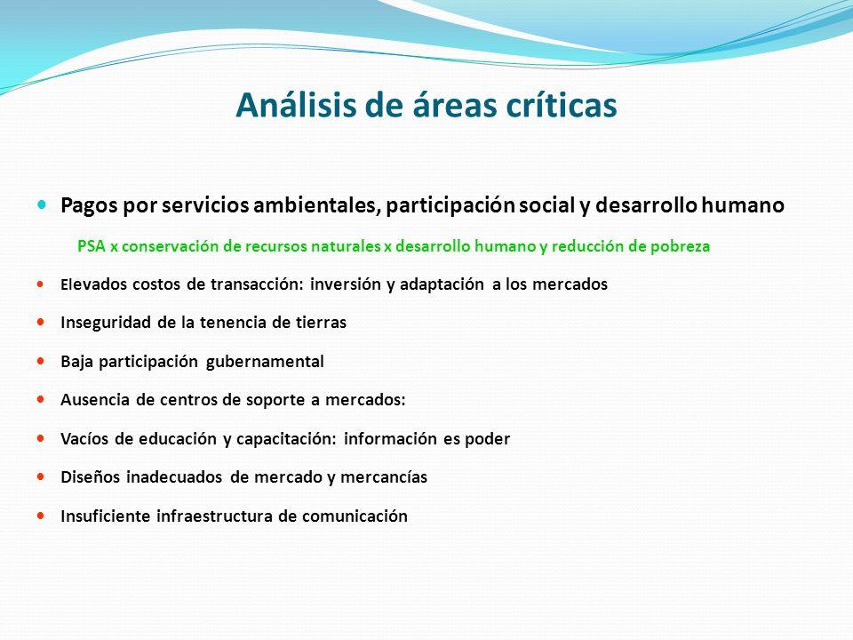 Análisis de áreas críticas