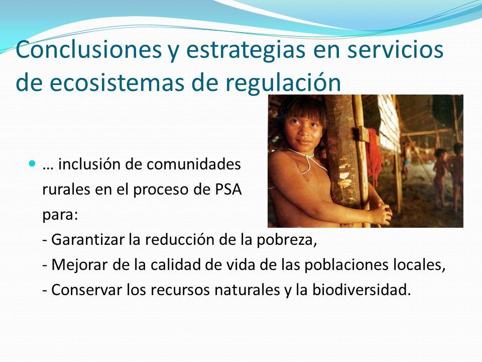 Conclusiones y estrategias en servicios de ecosistemas de regulación
