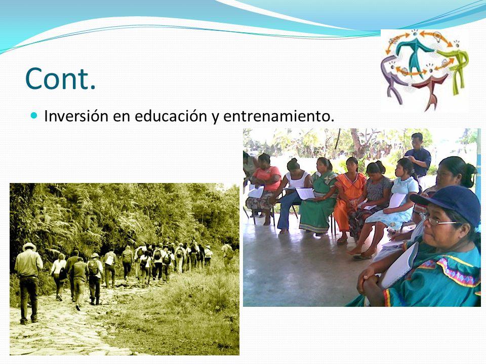 Cont. Inversión en educación y entrenamiento.