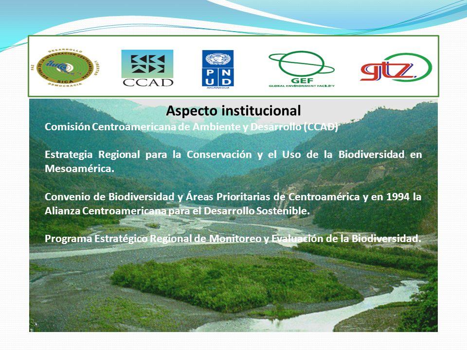 Aspecto institucional