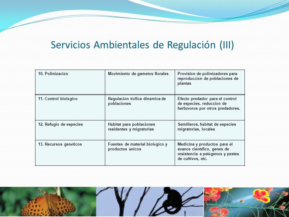 Servicios Ambientales de Regulación (III)