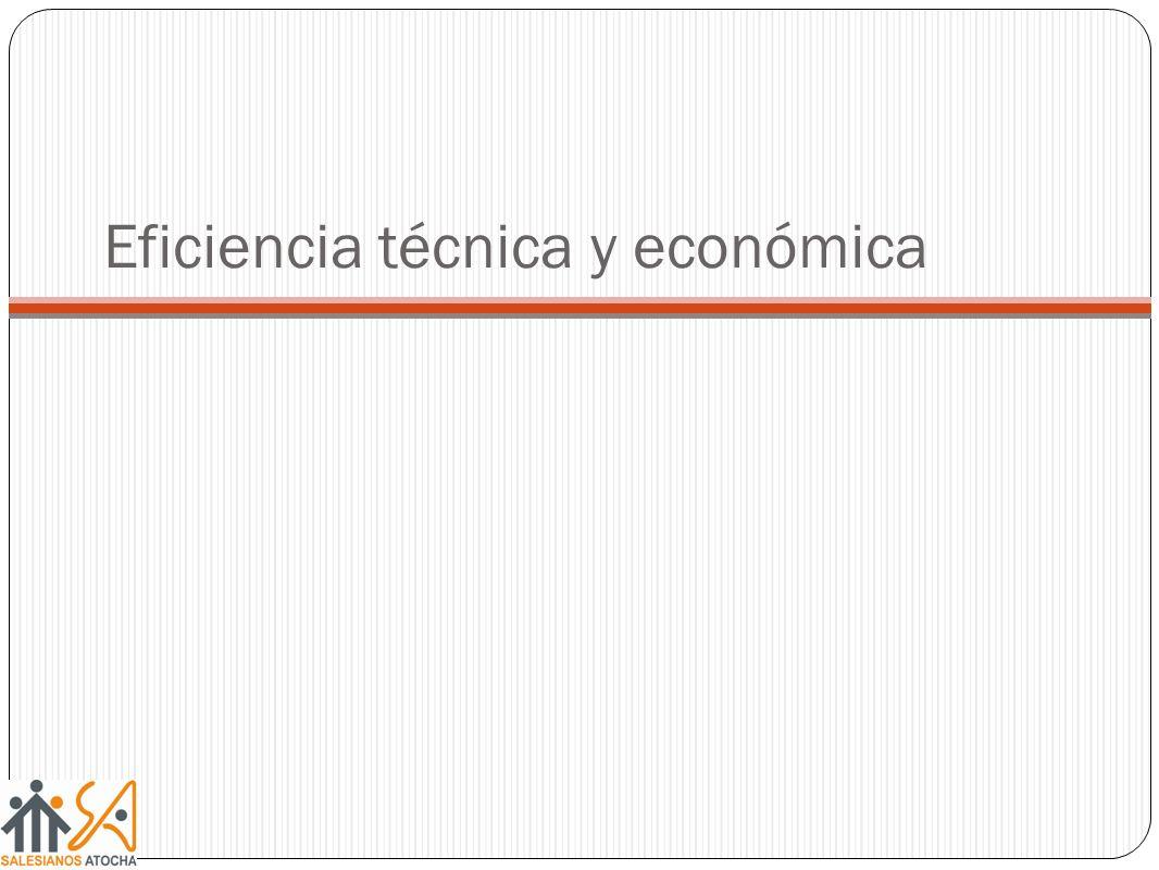 Eficiencia técnica y económica