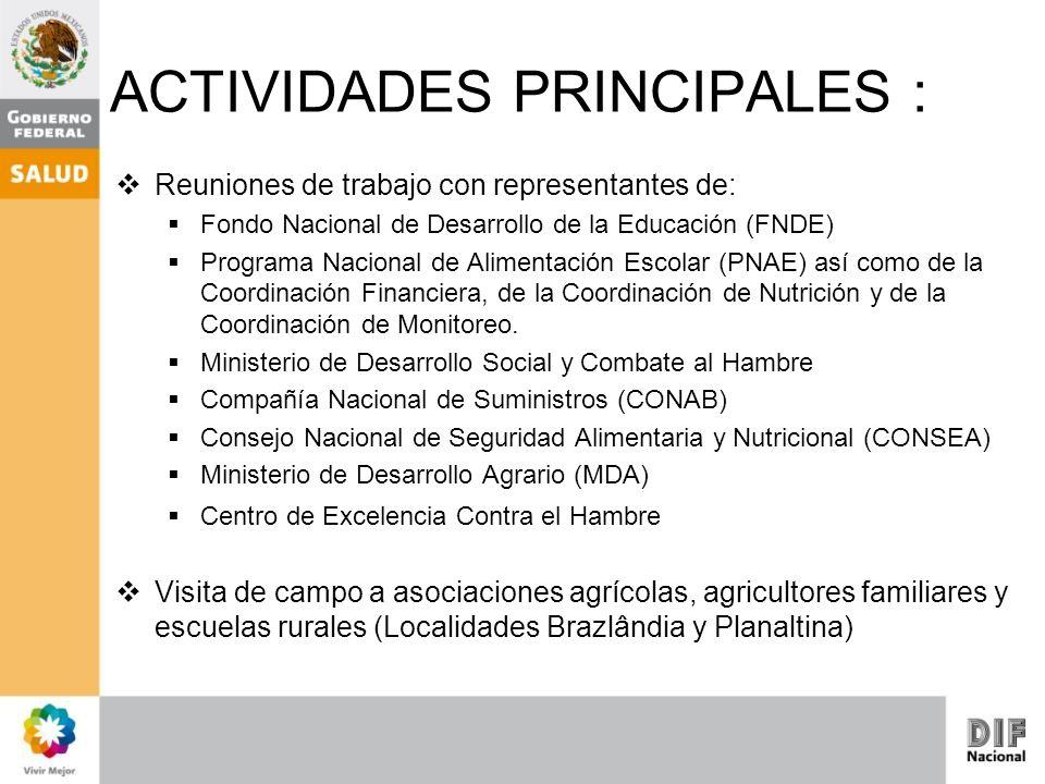 ACTIVIDADES PRINCIPALES :