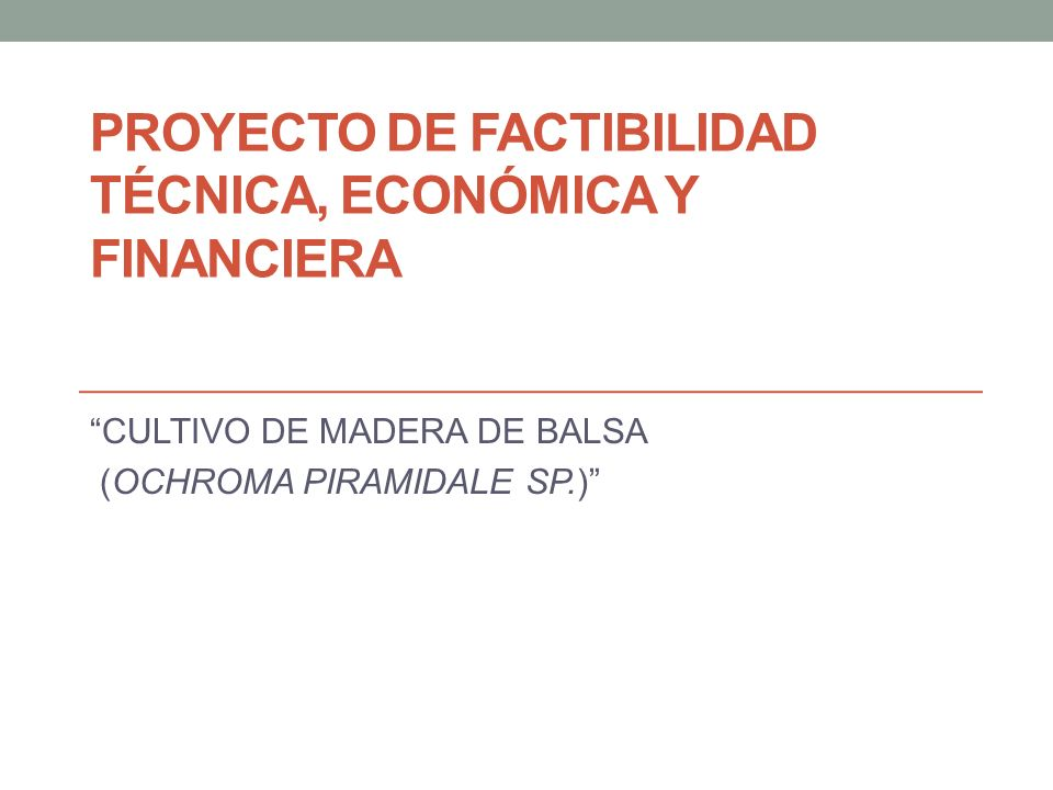 PROYECTO DE FACTIBILIDAD TÉCNICA, ECONÓMICA Y FINANCIERA