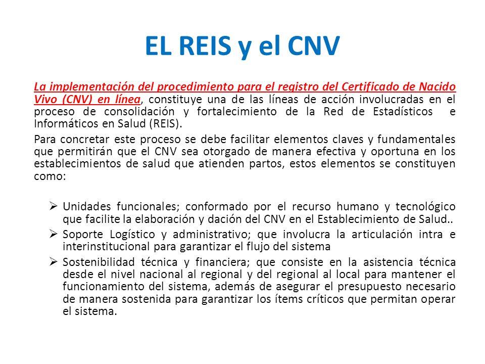 EL REIS y el CNV