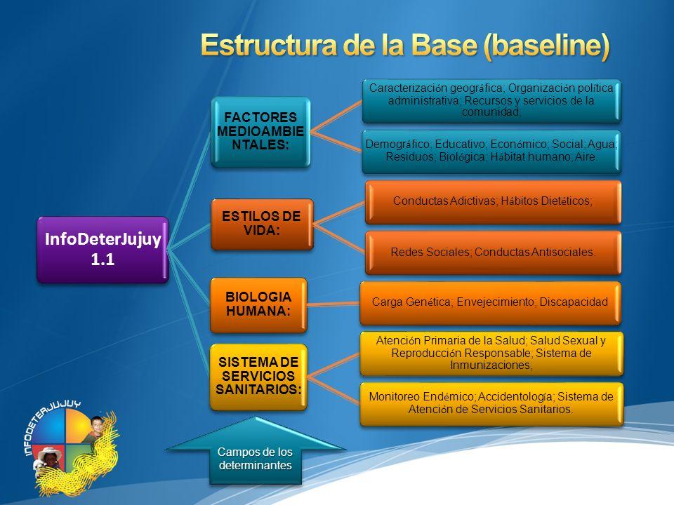Estructura de la Base (baseline)