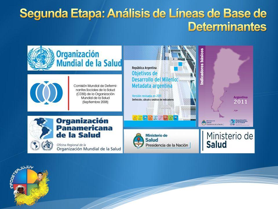 Segunda Etapa: Análisis de Líneas de Base de Determinantes