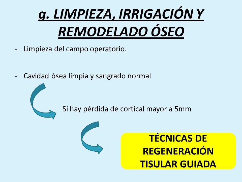 g. LIMPIEZA, IRRIGACIÓN Y REMODELADO ÓSEO