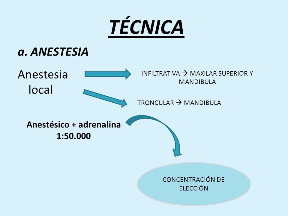 Anestésico + adrenalina 1:50.000