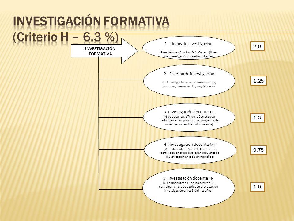 INVESTIGACIÓN FORMATIVA (Criterio H – 6.3 %)
